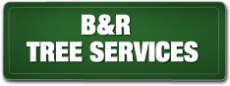B and R Tree Services